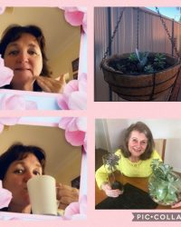 Ladies' Flower and Plant Week 01