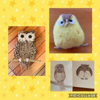 03 Owl